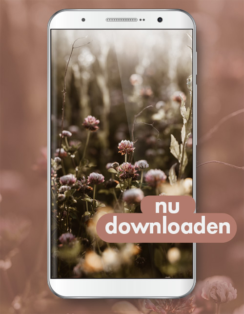 achtergrond-smartphone_download-bigger
