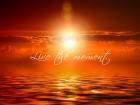 sunset-473603_1280
